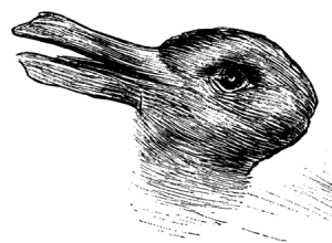 Pic _ Duck Rabbit Illusion